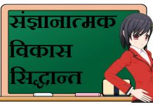 Cognitive Development in Hindi