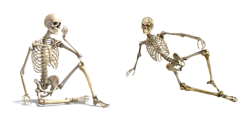 types of bones in human body in hindi