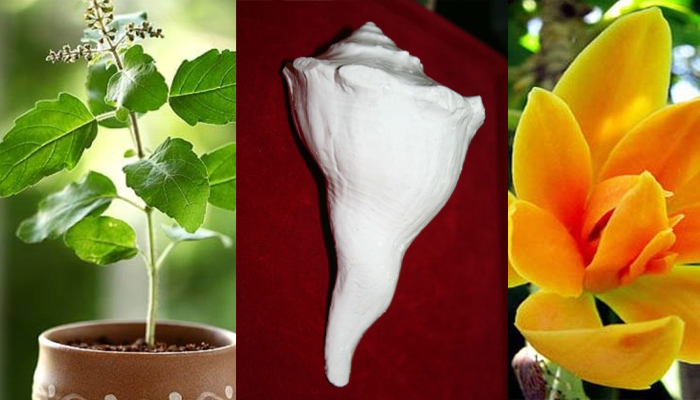 Dont use this Flower in Shiv Puja