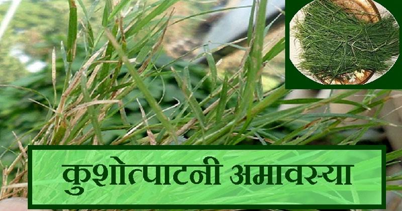 Kushotpatini Amavasya