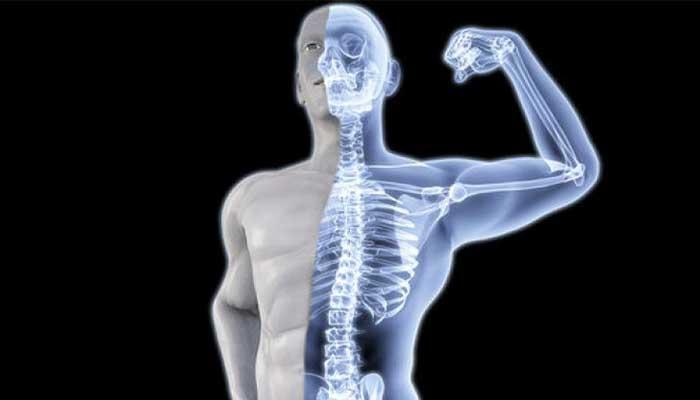 Good-for-bones
