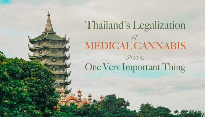 Thailand-medical-cannebis