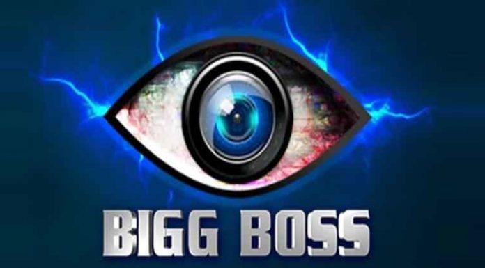 bigg boss most controversial contestants