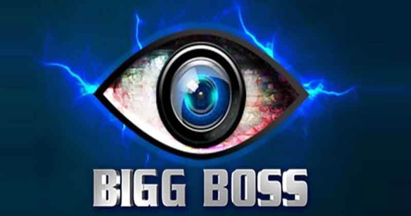 bigg boss most controversial contestants