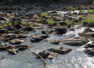 shalmala river