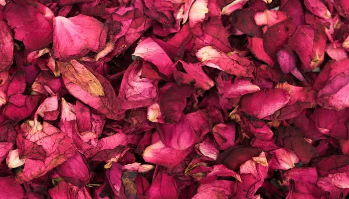 Rose Petals For Skin Glow