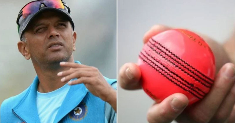 indian test players begin practice with pink ball in bengaluru under guidance of rahul dradiv