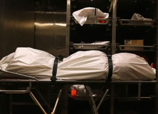 prisoner wakes up in mortuary in asturias spain