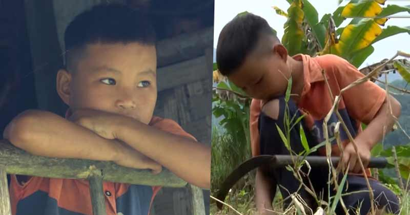 10 Year Old Live Alone And Do Farming