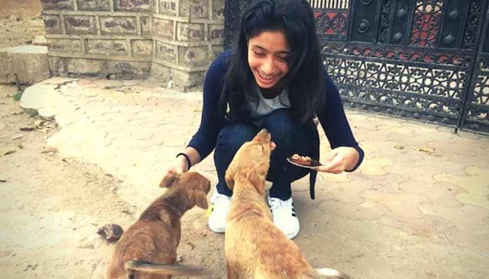 Chandani Grover Save Stray Dogs Animals