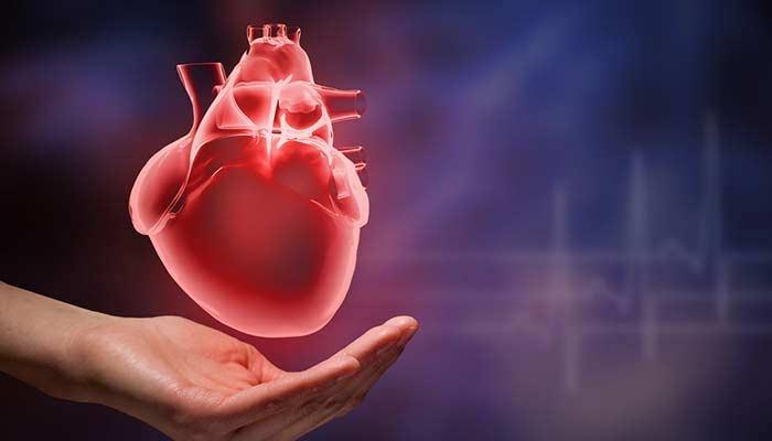 khajoor for heart