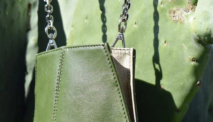 two guys create leather from cactus