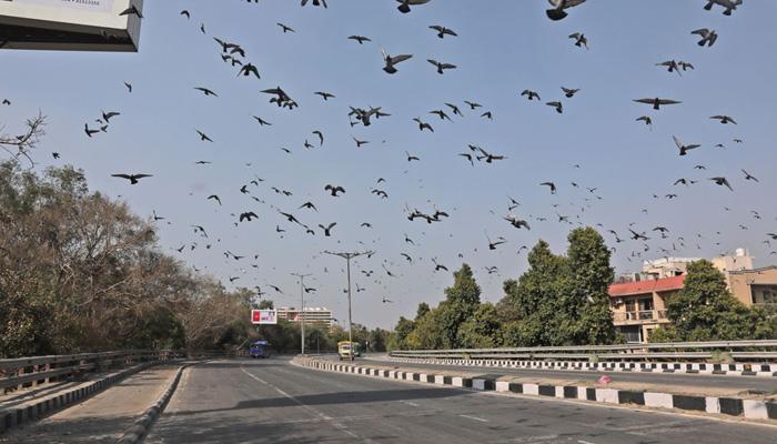 delhi health minister satyendra jain on lockdown