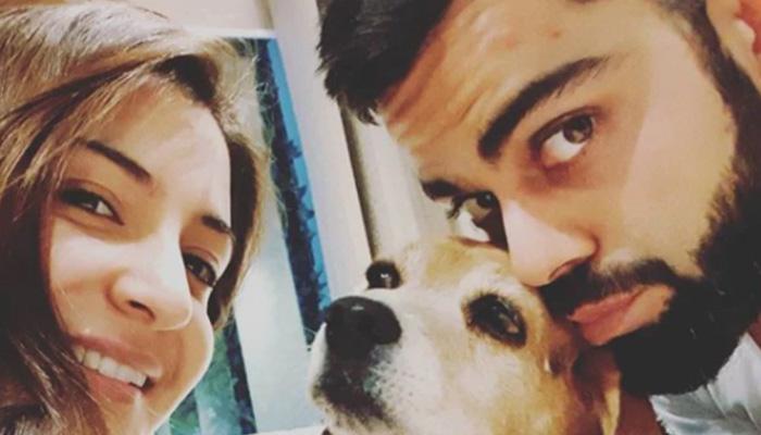 anushka sharma and virat kohli pet dog bruno death