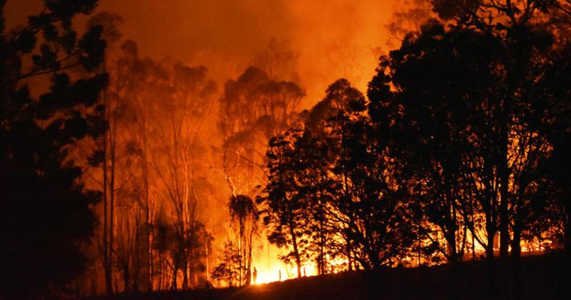 major fire incident during summer