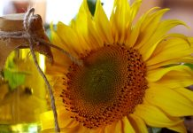 Benefits of Sunflower Oil for Skin