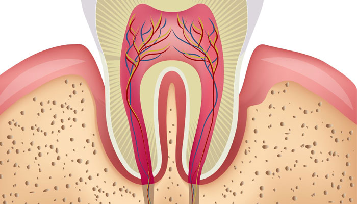 Damaged Teeth Nerves