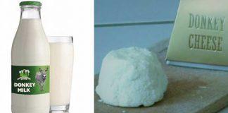 Donkey Milk Product