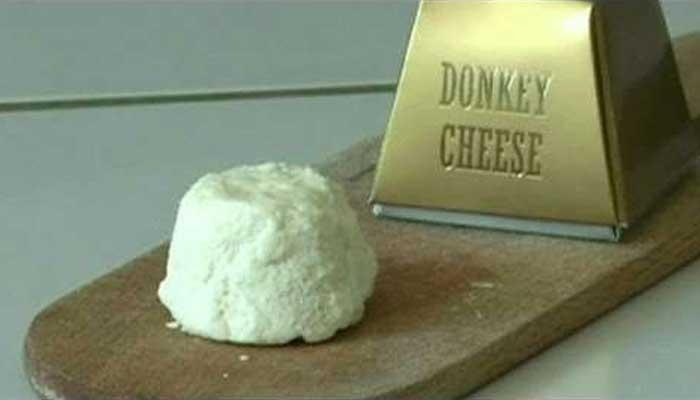 Donkey milk chees