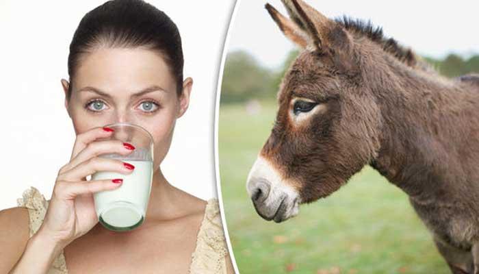 Donkey milk is healthy