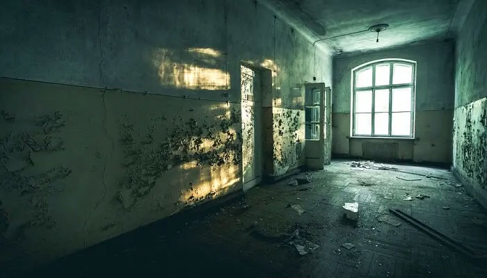 Gurugram Sector 7 Haunted House