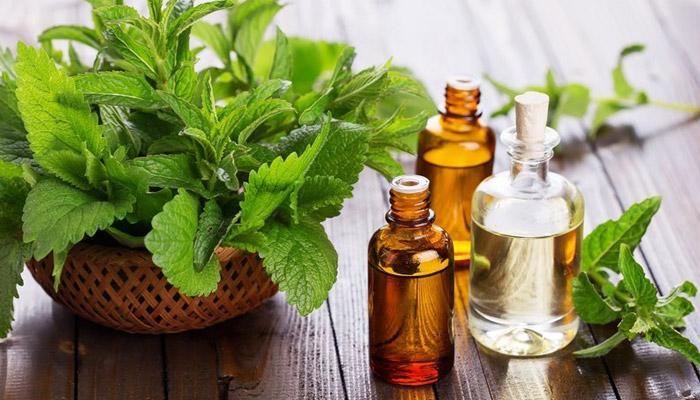 Mehandi oil benefit