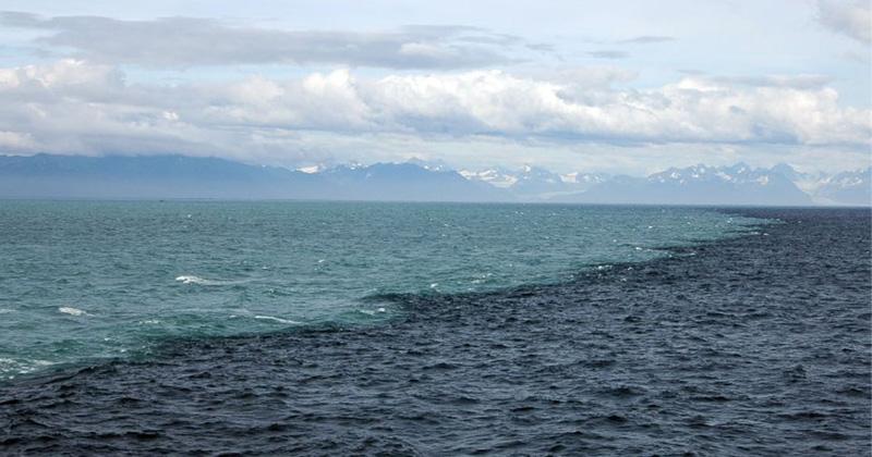 two oceans meet in Gulf of Alaska