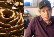 Dharmendra Shares Castle photo Built by Ants