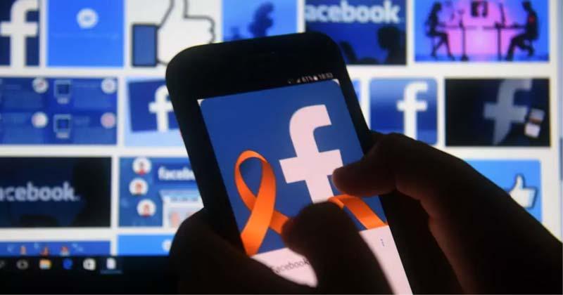 Facebook Grows Revenue
