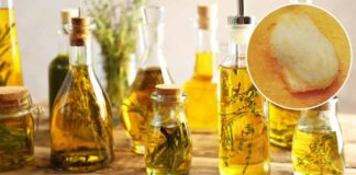 Benefits Of Mango Seeds Oil