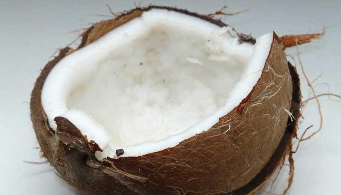 Coconut In Modak