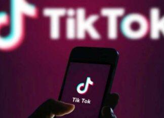 Softbank Partners Bid For TikTok Assets In India