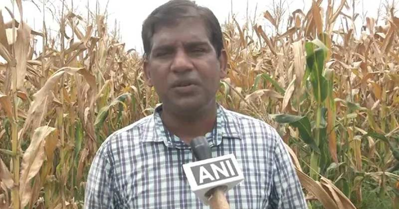 US Software Engineer Start Farming In India