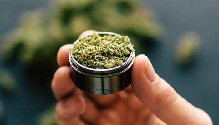 Weed Law In India
