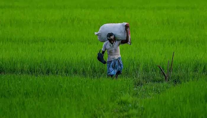 Why Roar In Punjab By Farmer On Kisan Bill