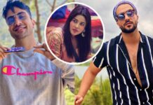 Aly Goni Wants Shehnaaz Gill In Bigg Boss 14 Show