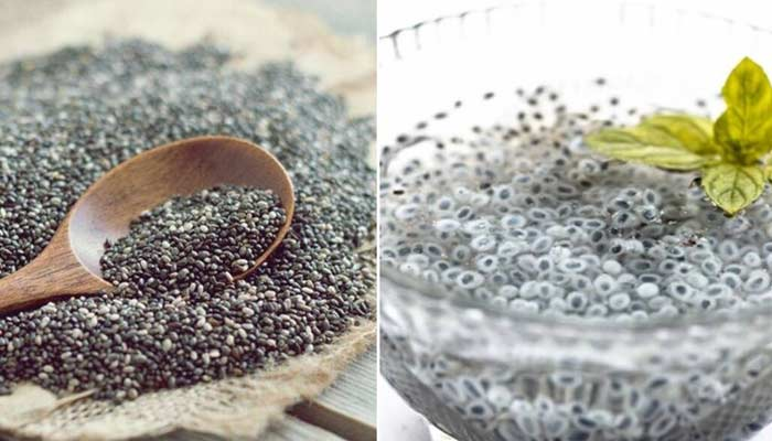 Difference Between Chia And Sabja Seeds