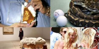 weird things sold in millions