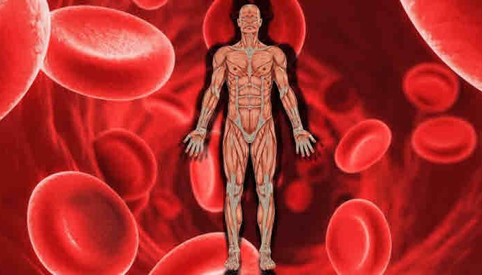 Carrot to Treat Anemia - benefits of carrot in hindi