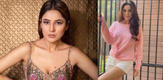 Shehnaaz Kaur Gill Photoshoot Viral On Social Media