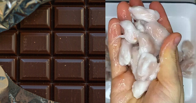 What Cocoa Pods Actually Look Like Viral Video